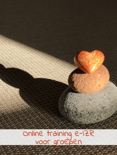 Online training e-IZR voor groepen
